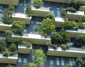 Een groene en diervriendelijke stad